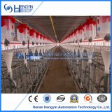 High Efficiency Equipment Automatic Pig Feeding System