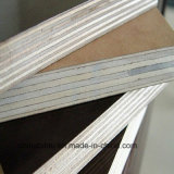 Waterproof Building Material/Finger Jointed Film Faced Plywood