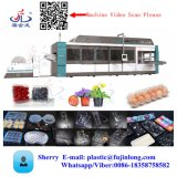 Fully Automatic Egg Tray Making Production Machine Price, Thermocol Take Away Food Cake Box Making Machine