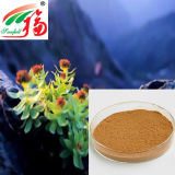 Pure Natural Rhodiola Rosea Extract Chinese Medicine Herbs Extract