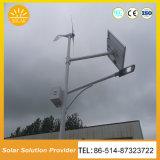 High Power Wind Turbine Generator Solar Street Lighting System