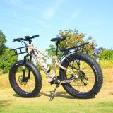 High Quality 1000W 48V MID Drive Mountain Electric Bike for Adults