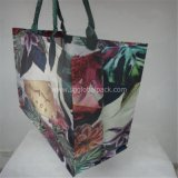 Printed Color Woven Shopping Bag for Sale