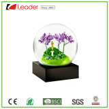 Finest Hand-Painted Resin Craft Season Snow Globe for Home Decoration and Souvenir Collections, Customized Your Own Scenery Water Globe
