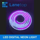 LED SMD 5050 Cheap Flexible LED Strip Lights