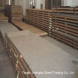 Hot Rolled of Stainless Steel Plate (304, 304L, 321, 904L)