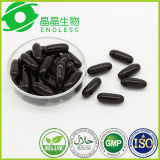 Bilberry Extract Supplement Powerful Antioxidant for Eye and Night Vision