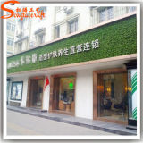 Guangzhou Wholesales Outdoor Artificial Plastic Plant Wall