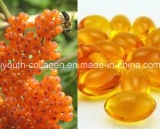 GMP, 100%Natrual Organic Wild Sea Buckthorn/Hippophae Seed Oil Soft Capsule, Anticancer, Kill Cancer Cells Health Food,