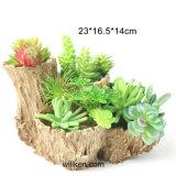 Polyresin Succulent Flower Pot Desk Decoration