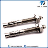 316 Stainless Steel Concrete Wedge Anchors
