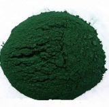 Wholesale Supply 100% Natural Algae Oil EPA DHA Omega 3 Powder