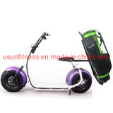 Golf Electric Scooter City Coco Fat Tire Tricycle Motorcycle Cargo Scooters for Golf Course