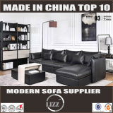 Davian Modern Sectional Leather Sofa (Lz717)