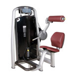 High Quality Back Extension / Commercial Fitness Equipment