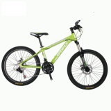 21 Speed MTB for Female Male Factory Mountain Bicycle