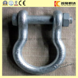 Galvanized European Type Large D Shackle