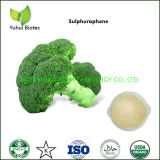 Broccoli Seed Extract Powder Anti Cancer Supplement Manufacturer