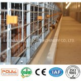 Poultry Farm Layer Cage Machinery