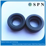 Ferrite Permanent Anisotropic Magnet Ring for Motor