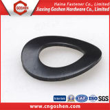 Carbon Steel Curved Spring Washers