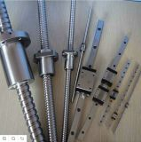 High Quality Rolled Steel Ball Screw with Servo Motor