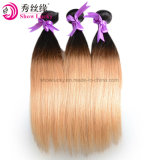 Beauty Fashion Two Tone Colored 1b/27 Brazilian Virgin Human Hair Straight Ombre Hair Extension