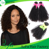 Kinky Curly Indian Virgin Human Hair in Cost-Effective Factory Price