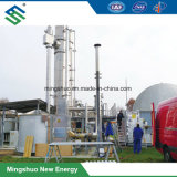 Biogas Purification Equipments for Decarburization of Landfill Gas