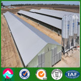 Galvanized Light Steel Structure Chicken Poultry Farm Project (XGZ-pH028)