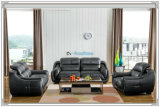 High Quality 1+2+3 Leather Living Room Sofa (A849)