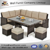 Waterproof Patio Hotel Restaurant Rattan Garden Dining Furniture (T-001)