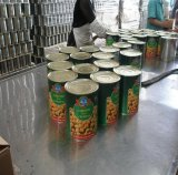 Hot Selling Fresh Production Excellent Quality Canned Chick Peas