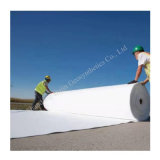 Best Price 600g Pet Nonwoven Geotextile for Dam Protection and Road Construction