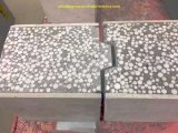 EPS Cement Sandwich Panel /Sandwich Cement Wall Board/Cement Sandwich Panels Machine