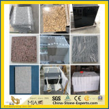 Natural White/Grey/Black/Red/Pink/Yellow Granite Tiles for Flooring/Wall
