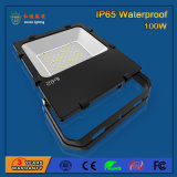 85-265V Transparent SMD3030 100W Outdoor LED Flood Light