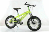 China Made High Carbon Steel Fat Tire Mountain Bike Bicycle