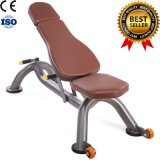 2016 Popular Free Weight Equipment Multifunction Adjustable Bench