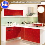 Wholesale Cabinet for Kitchen Furniture (zhuv)