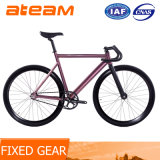 Fixed Gear Bike -Track 16 Wholesale Aluminium Single Speed Bicycle
