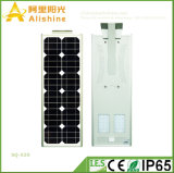 New 30W Factory Wholesale LED Solar Street Lights Outdoor Garden Lamp