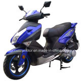 China Luxury 150cc/125cc 4 Stroke Moto Petrol Gasoline Gas Scooter (150T-RP)