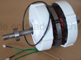 300W Low Speed Permanent Magnet Synchronous Generator