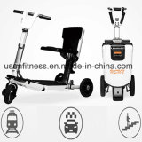 2018 New 3 Wheel 36V Folding Electric Scooter for Adult