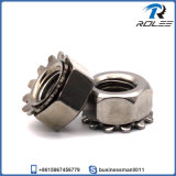 304/A2 Stainless Steel Keps K-Lock Nut with External Tooth Washer
