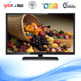 A Grade Screen Factory Price for Bulk 24 Inch LCD LED TV