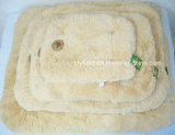 Pet Mat Bed Supply Accessory Product Dog Pet Bed