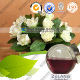 Bulk Price Gardenia Extract Manufacturer Edible Gardenia Red Pigment