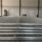 6′x12′ Tubing Od 42mm Tubing 50mm*50mm*2.4mm Spacing Temporary Chain Link Fencing